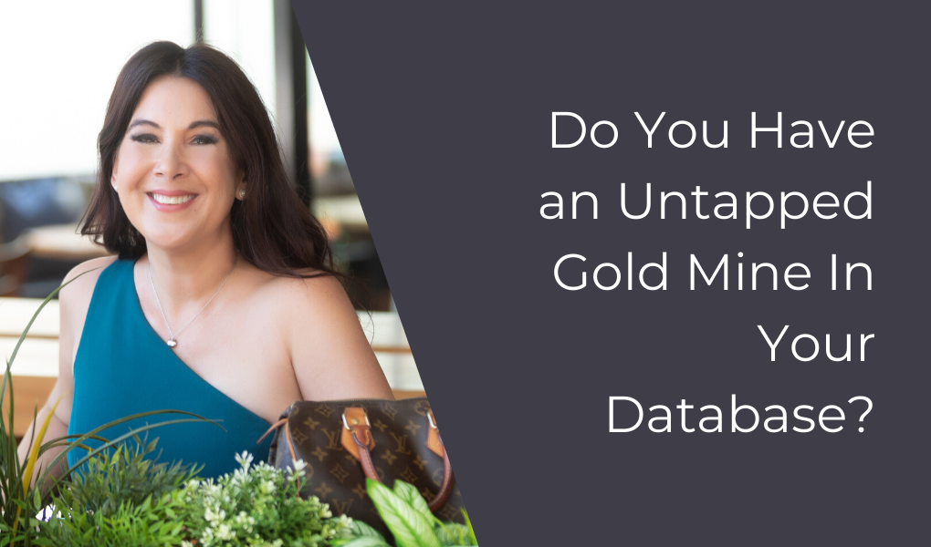 Do You Have an Untapped Gold Mine In Your Database?